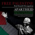 Mandela Palestine poster
